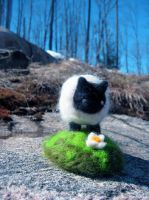 Needle-Felt Sheep by McDalek