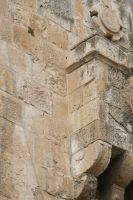 parrot at gate in Jerushalem by picture-melanie