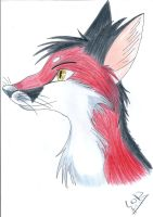 Red by FigoFox
