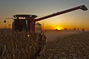 Harvest Sunset 10 by cthacker