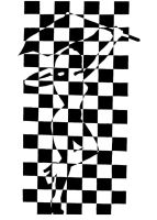 Checkered Flag Girl. by Practicecactus