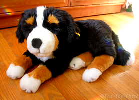 Steiff Bernese Mountain Dog by The-Toy-Chest
