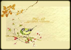 Png-4pshirley by SHIRLEY-S