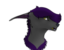 HEADSHOT FOR WOLFYY66 by HungryRainbowEater