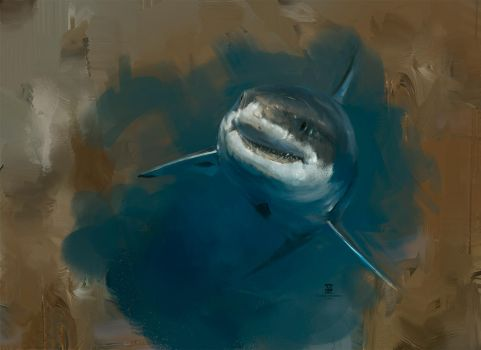 20151125 Shark Psdelux by psdeluxe