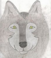 wolf with crooked eyes... by scarcrow27