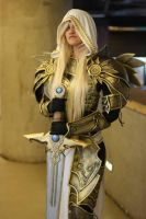 Lady Tyrael by faunacosplay