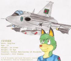 Czyrek and his Draken by DingoPatagonico