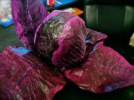 Red Cabbage by CChilson-art