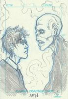 Harry Voldemort Staredown by Nortedesigns