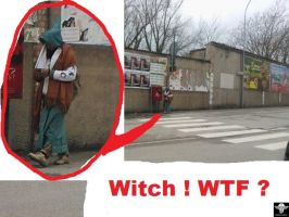Witch ! WTF ? by l-l-l-l-l-l-l-l-l-l