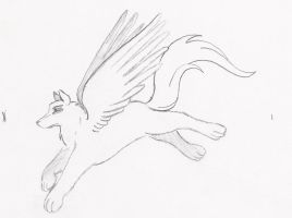 Winged Wolf by KagomeChan23