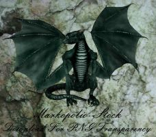 Dragon - Green Sept22A by markopolio-stock