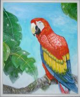Arvid the Parrot by Dacha-thwei