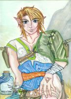 Ordon Link - Twilight Princess by Requiem-Of-Time