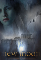New Moon Poster fan made 2 by twilightaholic94