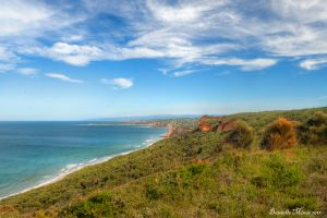 Anglesea HDR by DanielleMiner
