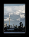 Toronto IV by angelicque