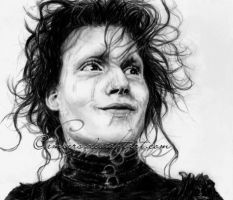 Edward Scissorhands by Embers