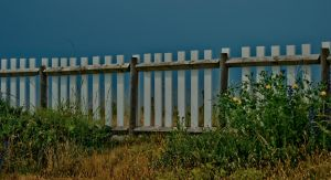 Barrier by forgottenson1
