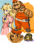 mario, peach and bowser by ENYAKORA