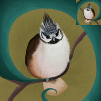 Crested Tit Icon by Feather-Dancer