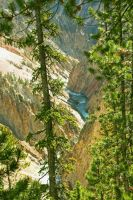 Yellowstone Grand Canyon V by Kippenwolf