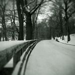 Winter Road II by mabuli