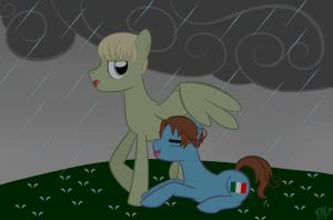 Harsh Weather by mtfc1029