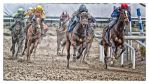 A Day At The Races -Premiere by AndersStangl