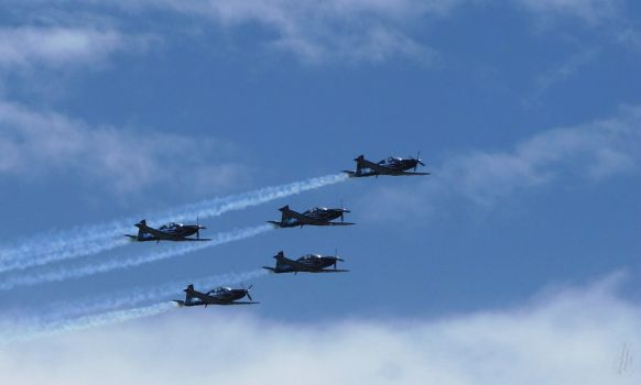 Silver Falcons - SA Navy Day by AfricanObserver