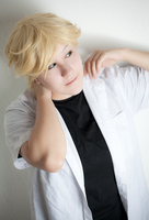 Miraculous Ladybug - Adrien test by stormyprince