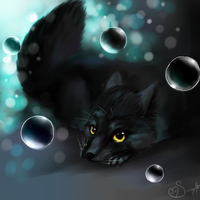 black fox by nevaeh-lee