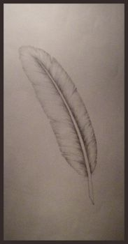 A feather by trumpite