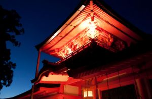Kasuga-taisha shrine  chumon gate by snzi-ph