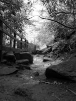 Path by ferbiegraphs