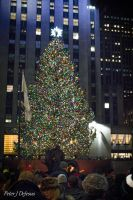 2013 NYC Christmas Tree by peterjdejesus