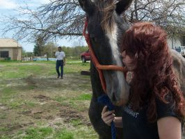 Kiss me clydesdale and girl by ArtisinmyHeart