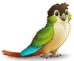 Green-cheek by Scarfowl
