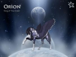 Orion - King of The Order by MaidenStar