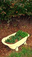 Country style flower pot by patrickjobst