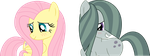 Fluttershy and Marble Pie by gebos97531