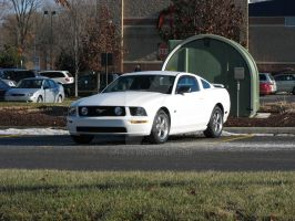2006 Ford Mustang GT by Qphacs