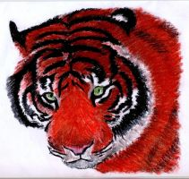 tiger No 4 soft pastels by EwaBlackWidowVsHare