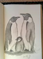 Daily sketch challenge day 26: family of penguins by Chiilla