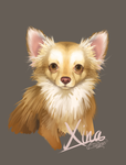 SpeedPainting-Xina by CookieHana