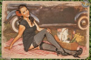 Pinups - Lazy Day Picnic by warbirdphotographer
