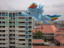 Dashie flying outside my house by laopokia