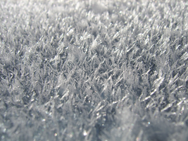 Frost Texture 03 by Siobhan68