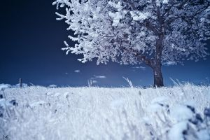IR-2011-09 by blackdaddy